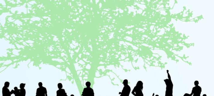 családfa-rajzolás